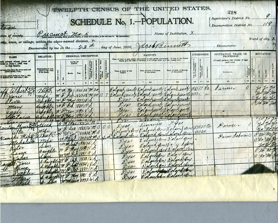 1900  United States Census                Robertson County Bremond ,  Texas