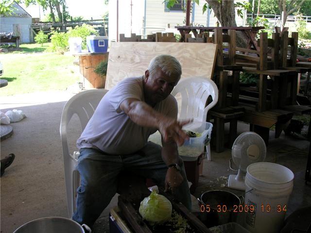 Gene Cutting Cabbage
