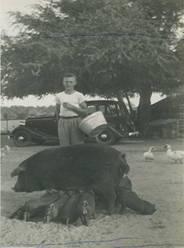 Joe Okonski in 1951