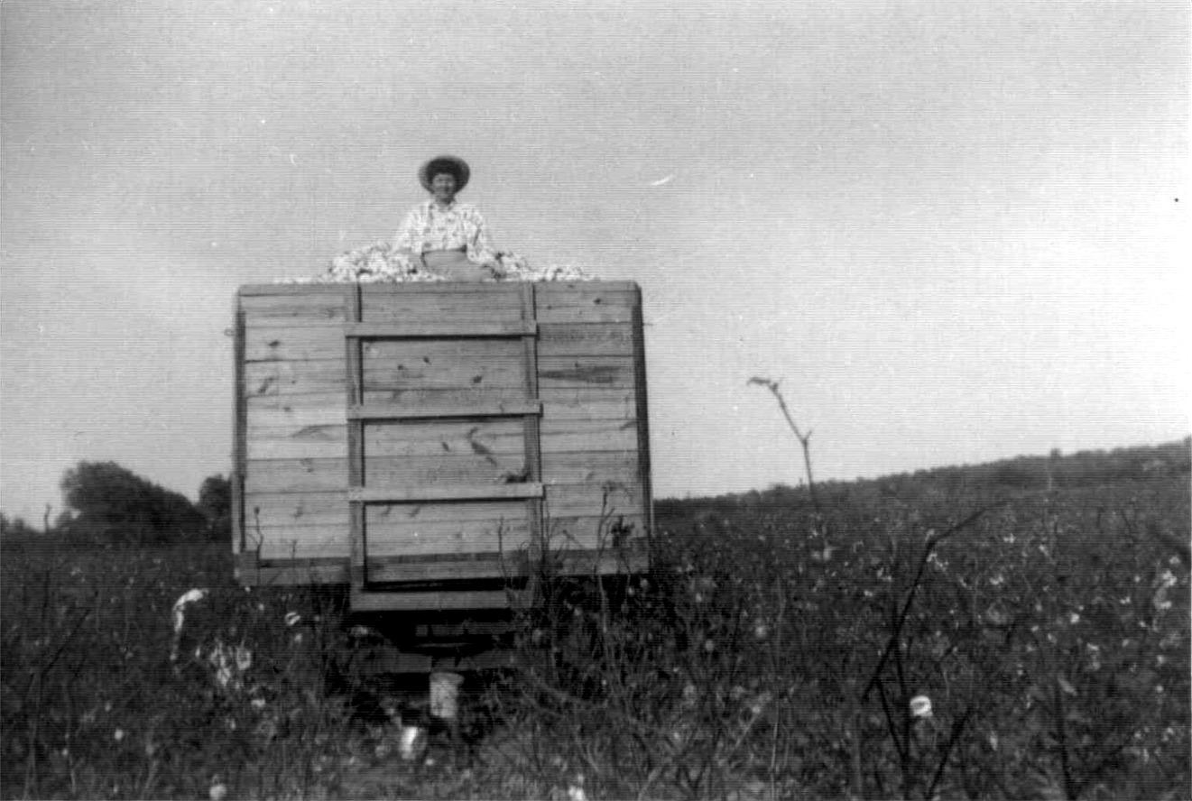 Pauline on trailer